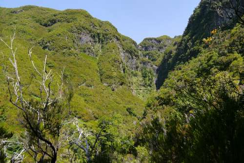 Madeira Landscape Wild Mountains Nature Water