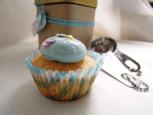 Magdalena Blue Pastry Baking Oven Cupcake