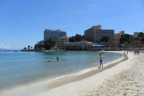 Majorca Palm Trees Palma Beach Sand Sea Holiday