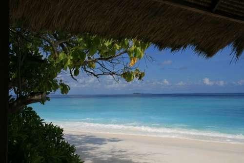 Maldives Sea Vacation Summer
