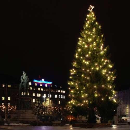 Malmo Sweden Night Christmas Tree Hotel Statue