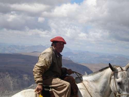 Man Person Riding Horse Argentina Native