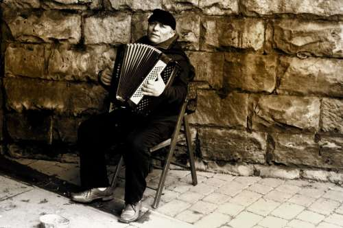 Man Accordion People Music Work Livelihood Style