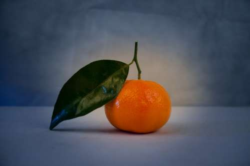 Mandarin Green Leaf Close-Up Isolated Tangerine
