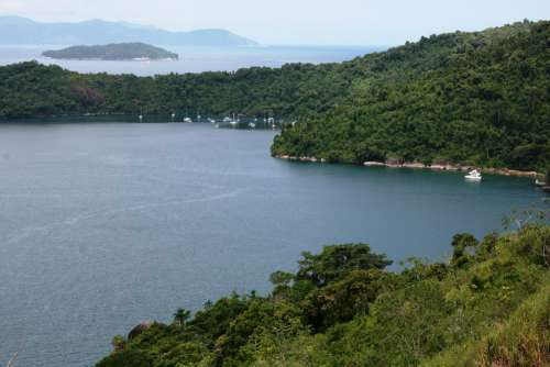 Mar Tropical Vegetation Atlantic Forest Vista Angra