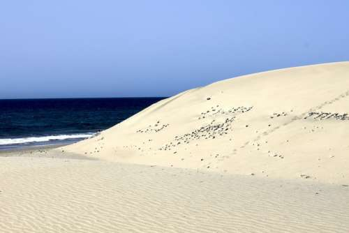 Maspalomas Gran Canaria Beach Spain Canary Islands