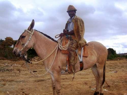 Mass Cowboy Vale Do Jequitinhonha Araçuaí Cowboy