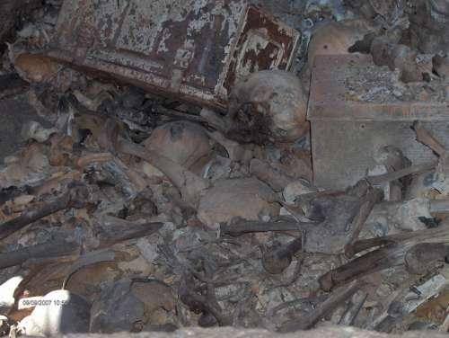 Mass Grave Skull Bones Death Horror Scary Crypt