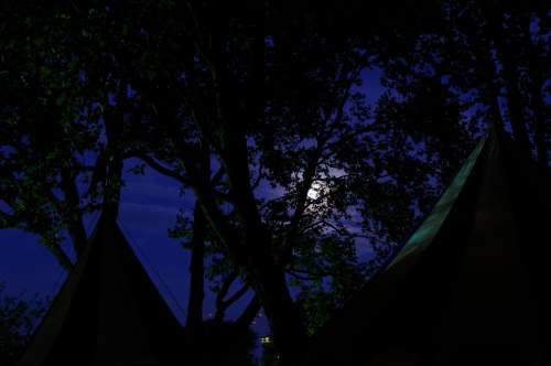 Medieval Market Army Camp Tents Treetop Moon