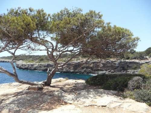 Mediterranean Sea Coast Rocky Coast Rocky Mallorca