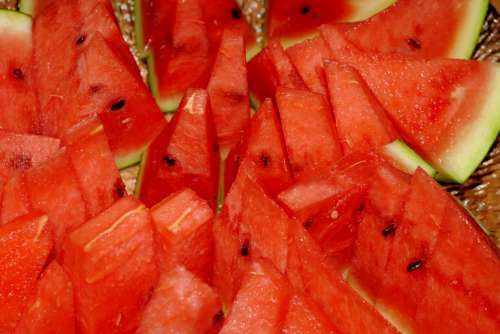 Melon Watermelon Red Green Fruit Nature