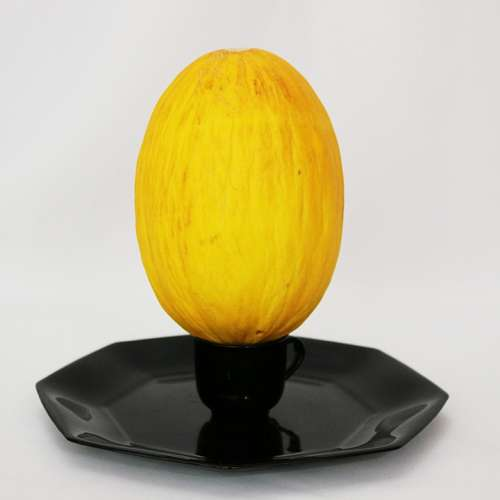 Melon Yellow Canary Food Fruit Power