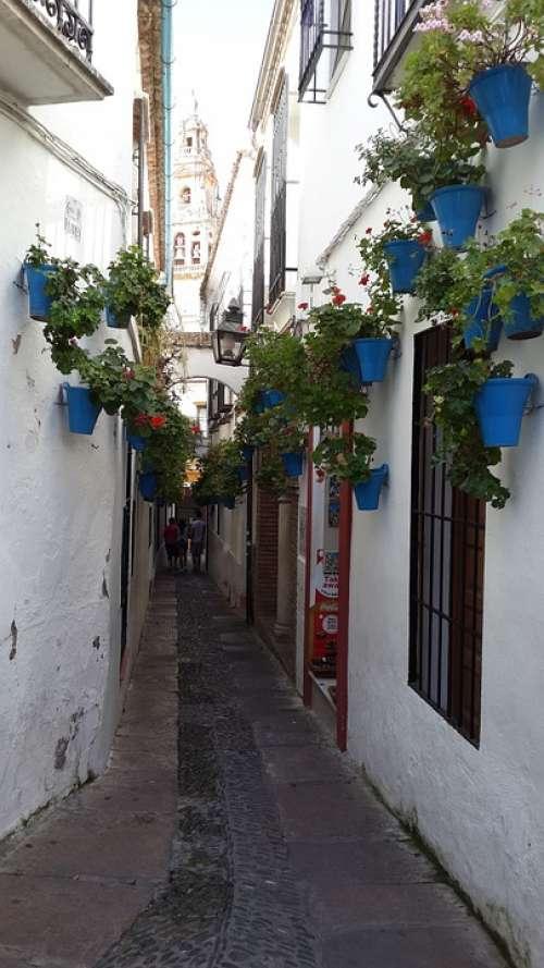 Mijas Flower Boxes Alley Spain Quaint