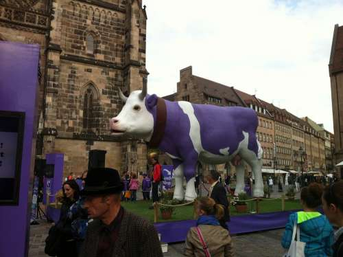 Milka Cow Purple Nuremberg Cow Animals Milk Cow