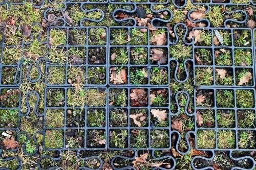 Module Share Items Wash Mosaic Photo Mosaic
