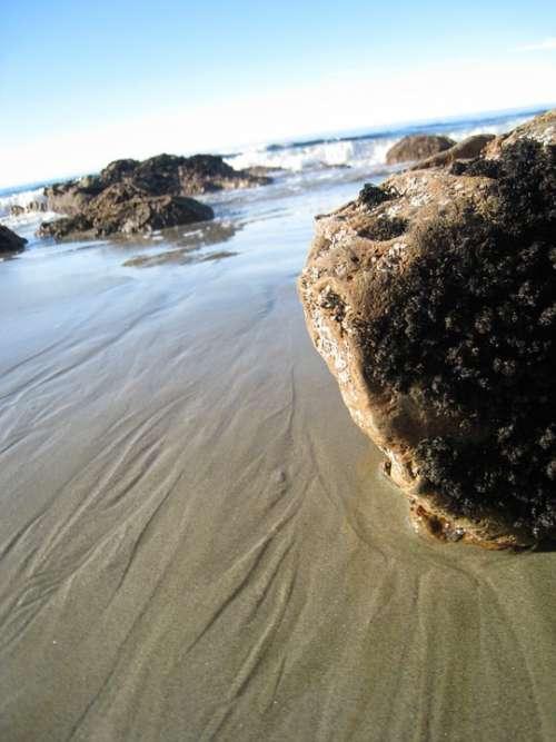 Moeraki Boulders Sea New Zealand Beach Rock