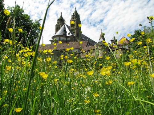 Monastery Comburg Schwäbisch Hall Meadow Bloom