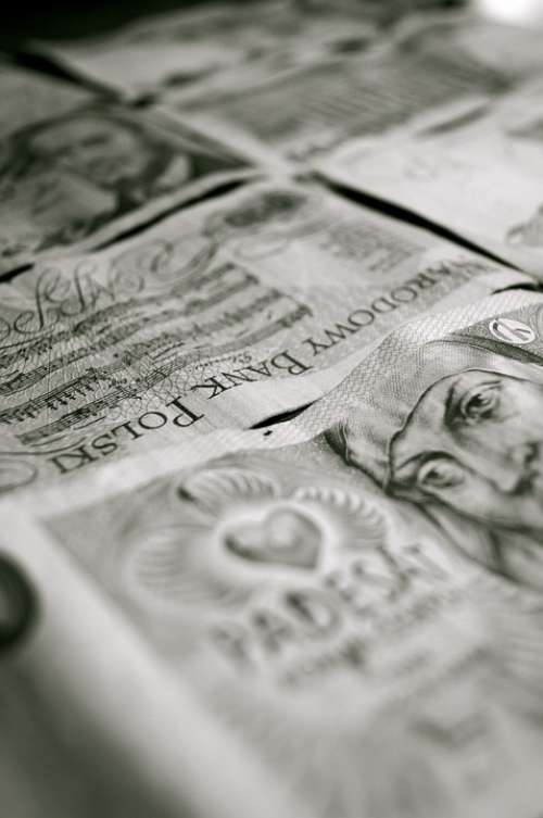 Money Polish Poland Pay Seem Shares Paper Money