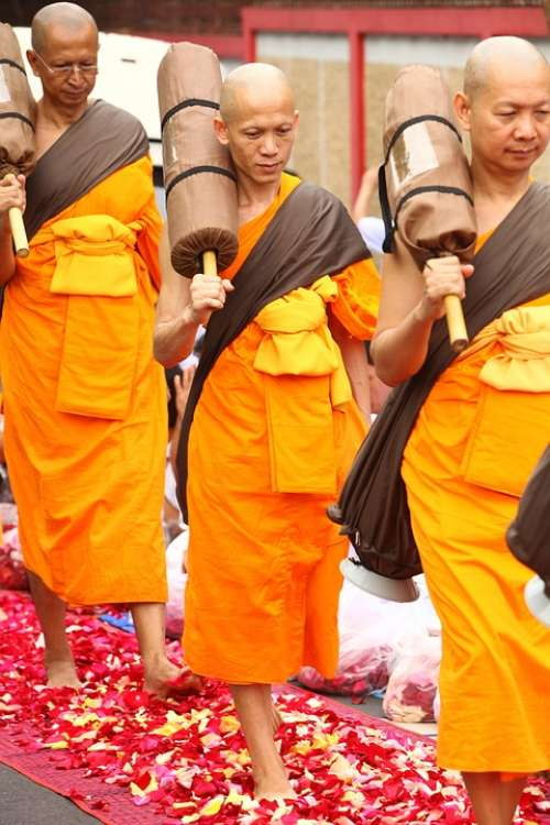 Monk Buddhist Meditate Tradition Ceremony Orange
