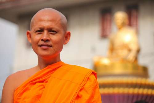 Monk Buddhists Bald Rose Petals Tradition Ceremony