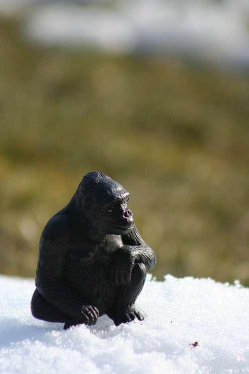 Monkey Figure Ape Animal Gorilla Wild Lonely