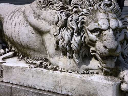Monument The Statue Ornament Sculpture Lion Animal
