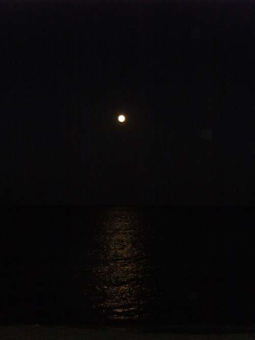 Moon Full Moon Night Moonlight Darkness Black