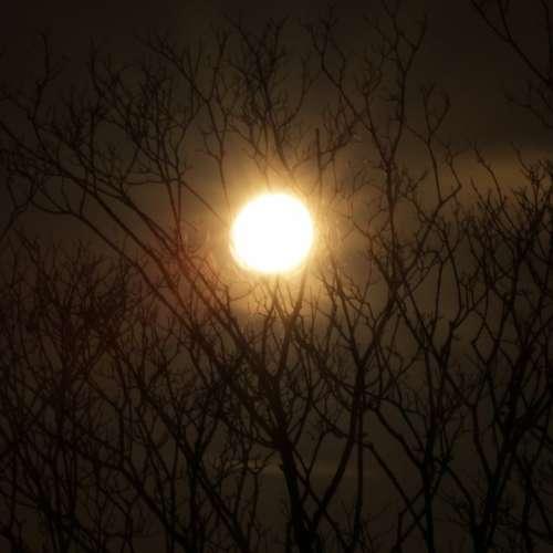 Moon Night Sky Silhouette Sky Dark