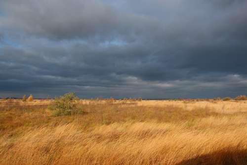 Moor Atmospheric Sky Clouds Nature Field Marsh