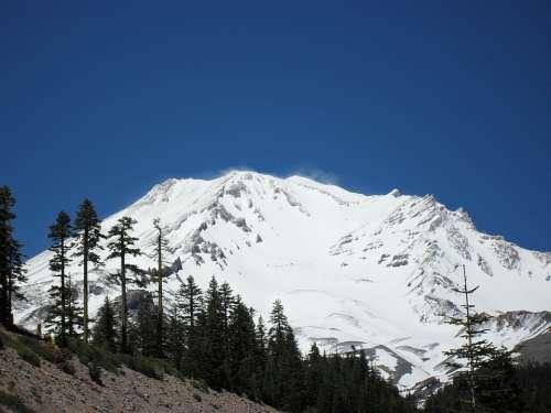Mount Shasta Mountain Trees Landscape Natural Peak