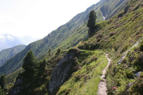 Mountain View Away Path Berliner Höhenweg Gams Hut