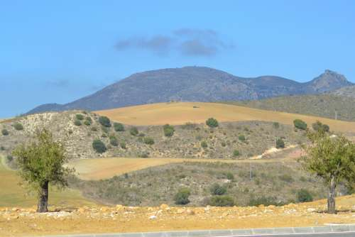 Mountain Spain Tree Landscape Nature Mediterranean