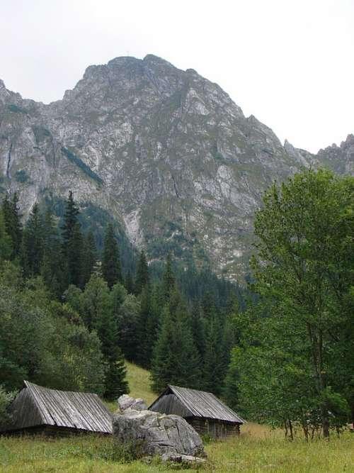 Mountain Mountains Top Nature Tatra Poland