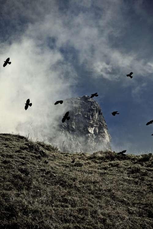 Mountains Mountain Dolen Dolen Birds Klausen Pass