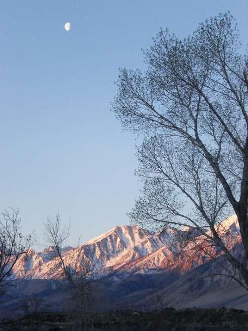 Mountains Trees Moon Snow Peaks