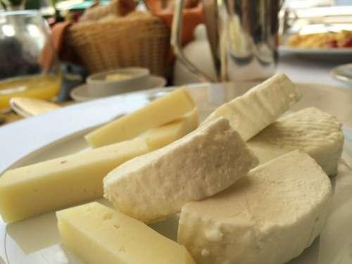 Mozzarella Cheese Pasteurized Milk Italy Dairy