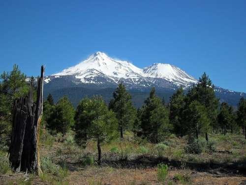 Mt Shasta Mountain Snow Outdoor Majestic