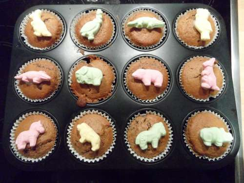 Muffins Muffin Plate Baked Small Cakes