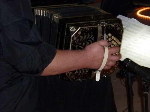 Music Musician Bandoneon Tango Argentino Instrument