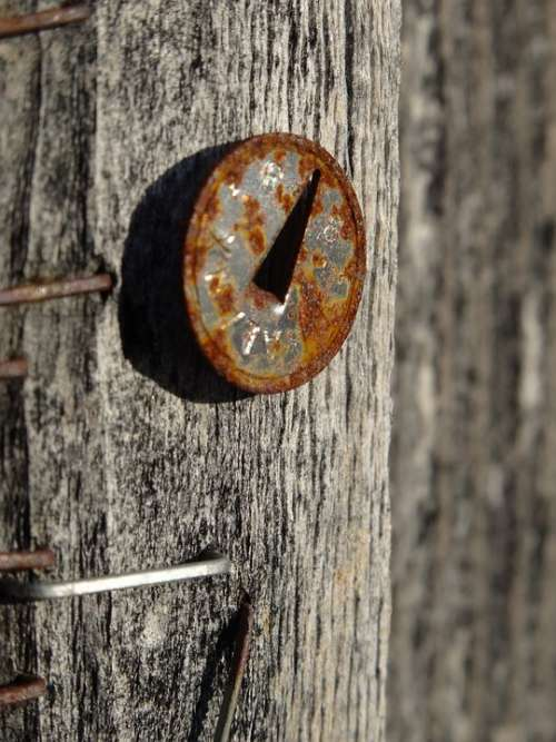 Nail Wood Rust Old Memory Forget Weathered