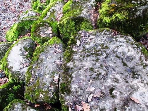 Nature Stones Shore Stones Moss Bemoost