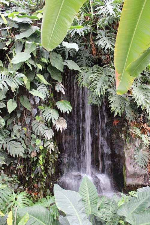 Nature Waterfall Tropics Green Landscape Rock