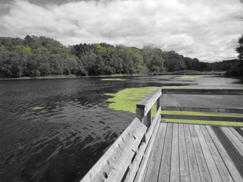 Nature Water Dock