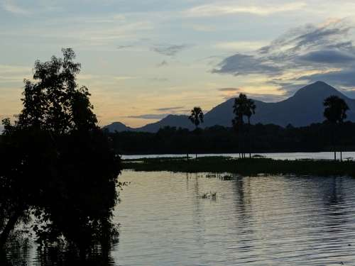 Nature Kerala India Green Landscape Sunset Sky