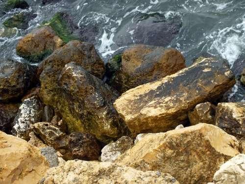 Nature Rocks Sea Shore Water Landscape Beach