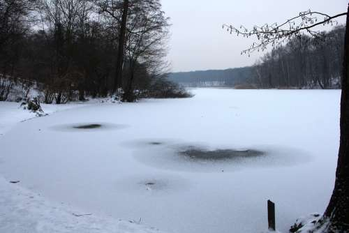 Nature Winter Grunewald Lake Schlachtensee Snow