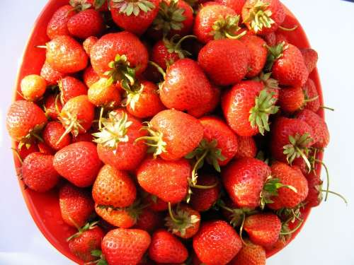 Nature Fruits Vegetables Strawberry Swet Red