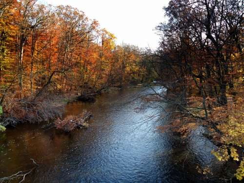 New Jersey Passaic River Fall Autumn Water River
