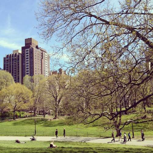New York City Central Park Manhattan Urban Outdoors