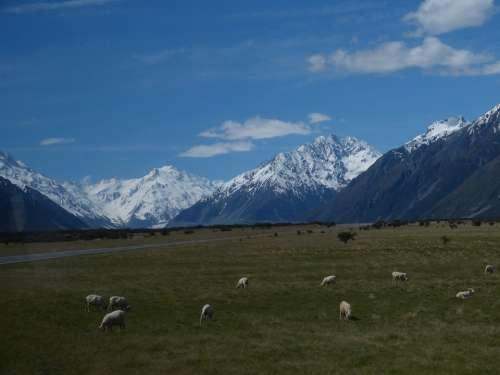 New Zealand Nature Landscape South Island